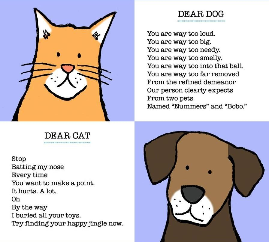 By Francisco Marciuliano The cat VS.dog poetry slam