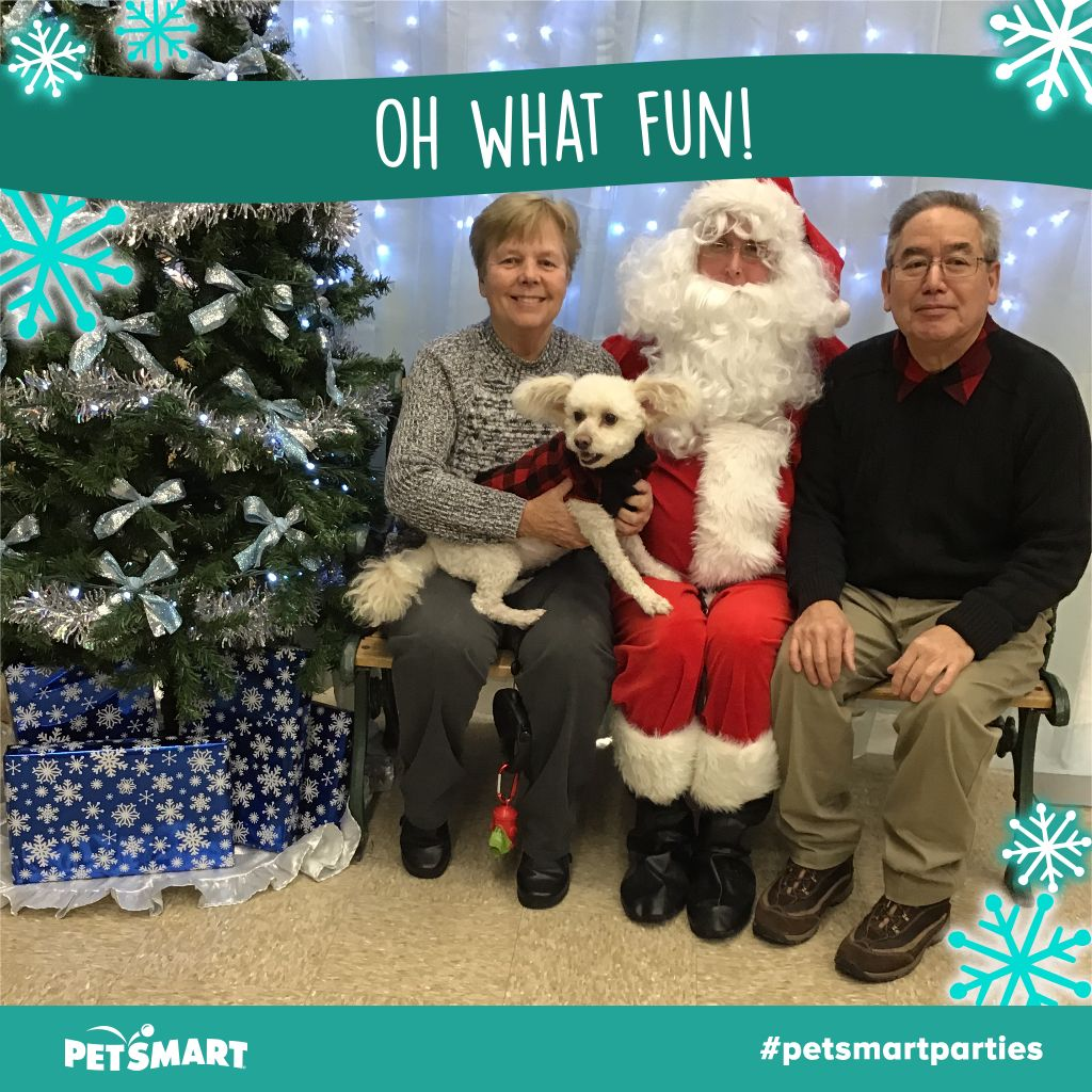 Here's my Pet Photo Animal photo, Petsmart, Christmas