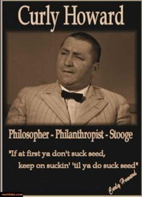 The Picture Is From Disorder In The Court But The Quote Is From Movie Maniacs With Images The Three Stooges The Stooges Words