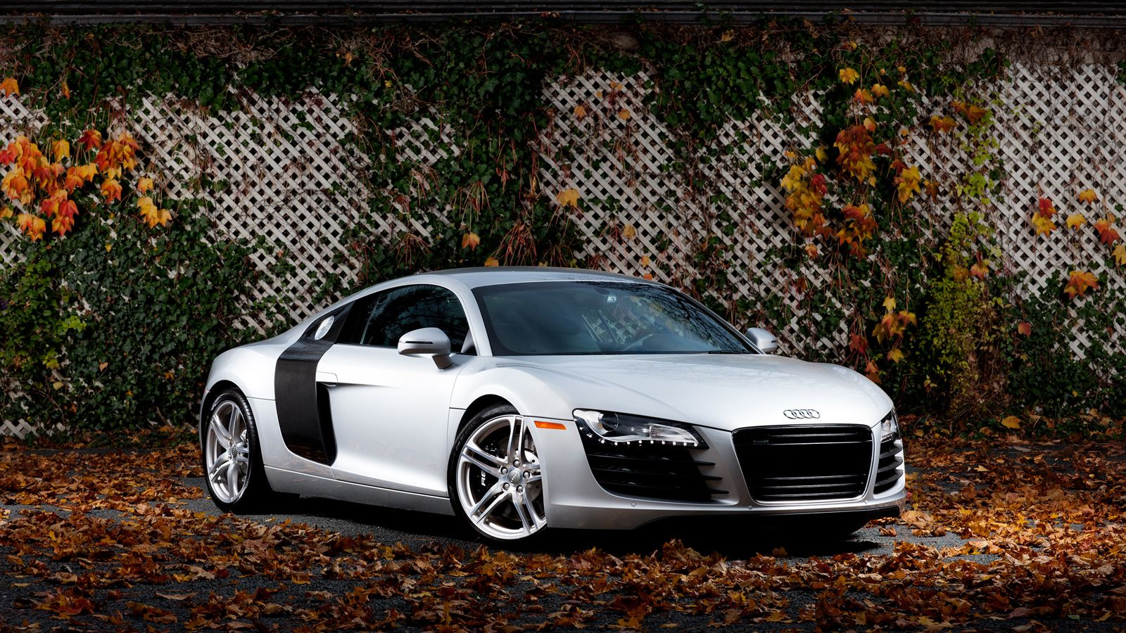 Pin By Leticia Winters On Getting Around Audi R8 Wallpaper Audi Audi R8