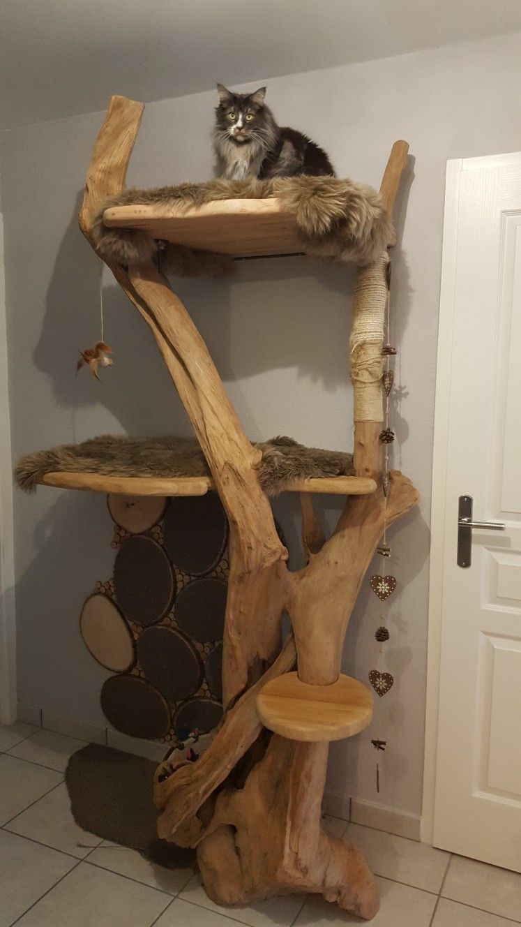 Homemade Cat Tree Catsdiytree Cat Trees Homemade Diy Cat Tree