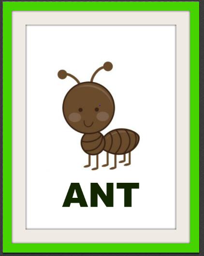муравей на английском картинка фото, картинки