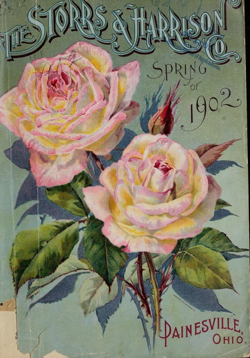 Каталог старые открытки, для хорошего