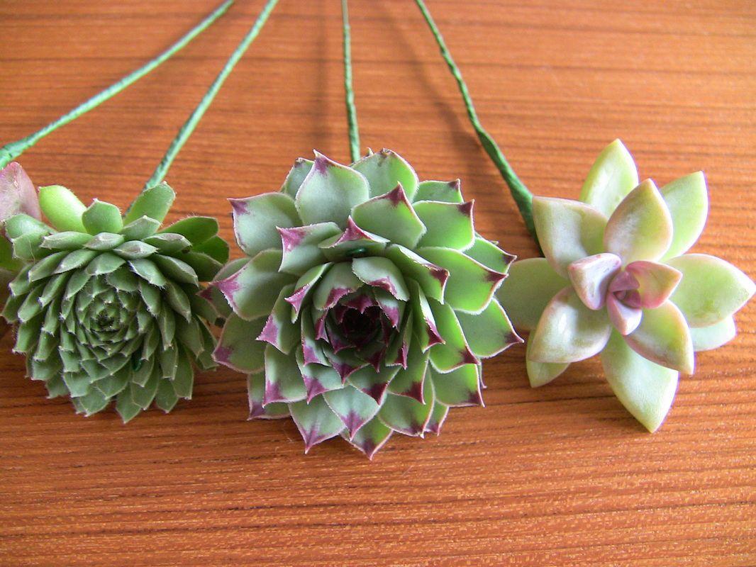 DIY Succulent Bouquet Succulent Wedding Bouquets