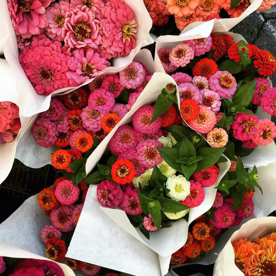 Virtual Flower Bouquet Maker | New House Designs