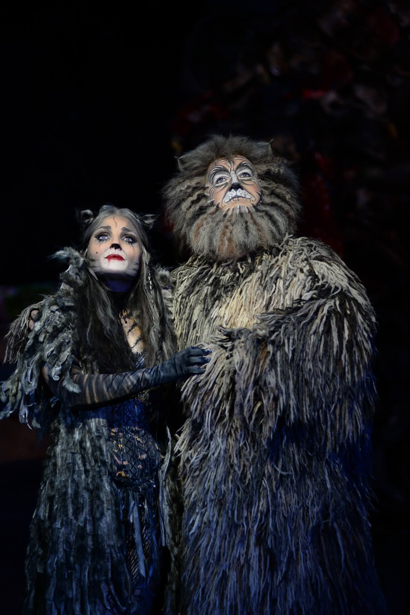 Grizabella & Old Deuteronomy (With images) Cats the