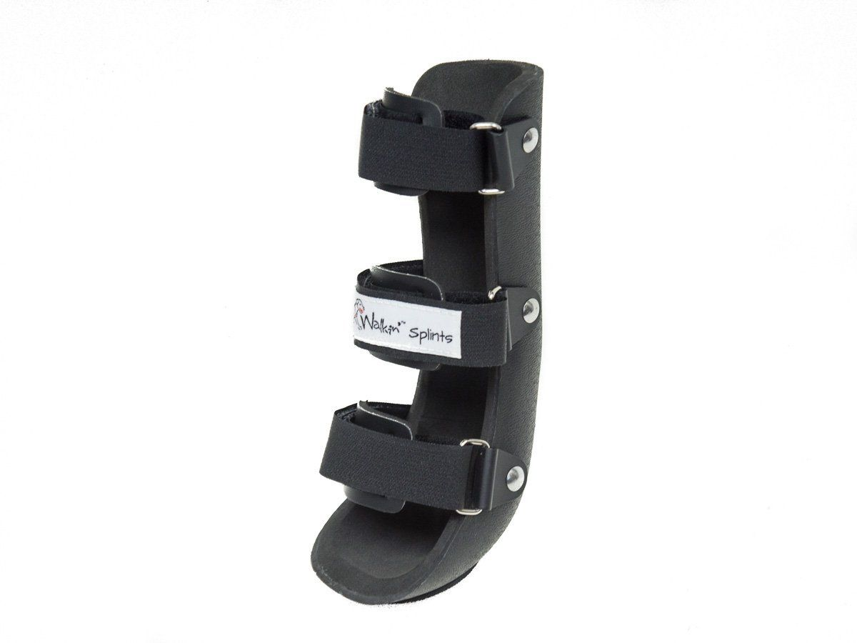 The Walkin Front Splint For Dogs And Cats Assists With Injuries