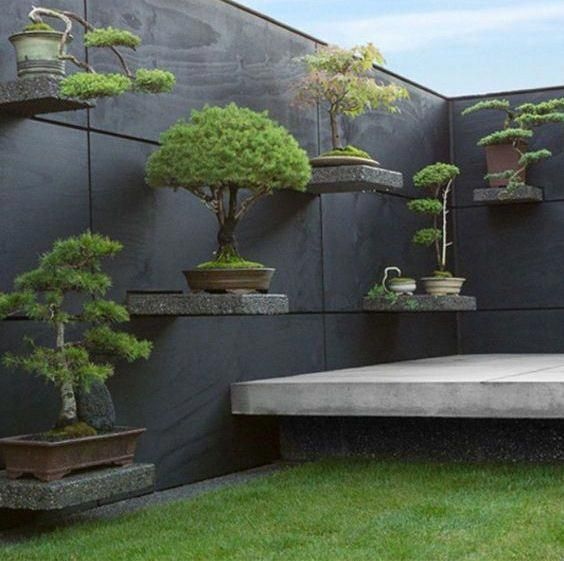 Photo of Bonsai shelves create simplicity in Japanese Garden space #japanesegardendesign …