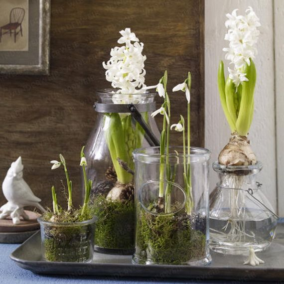 60 Adorable Spring Terrariums For Home Décor