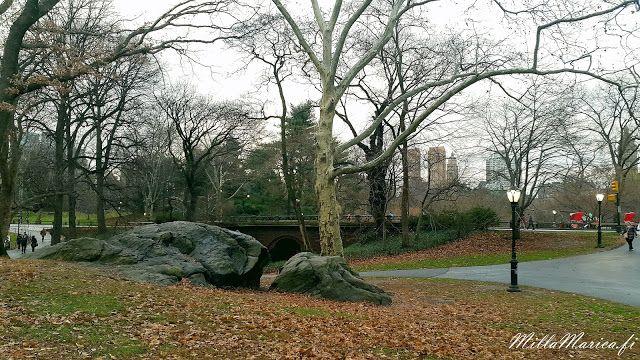 MillaMarica: New York, central park
