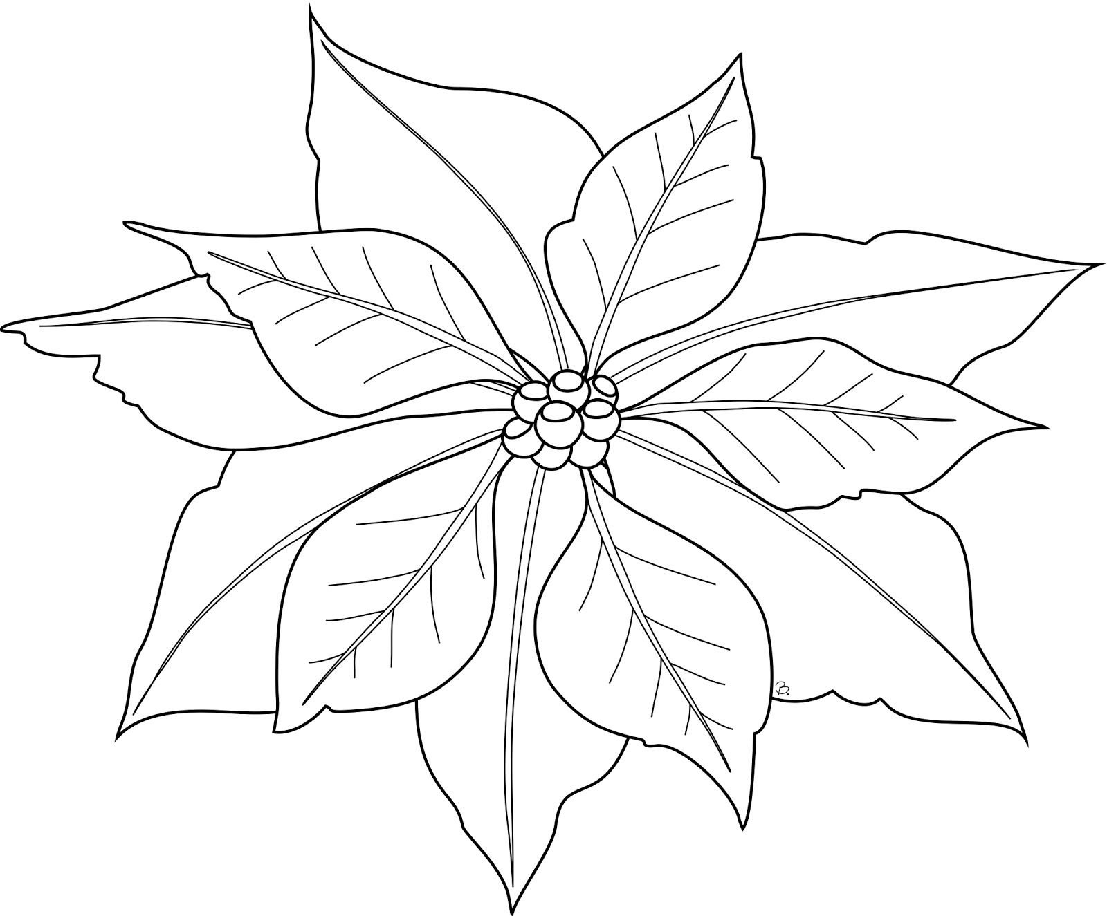 christmas poinsettia coloring pages   Poinsettia Freebie   my ...