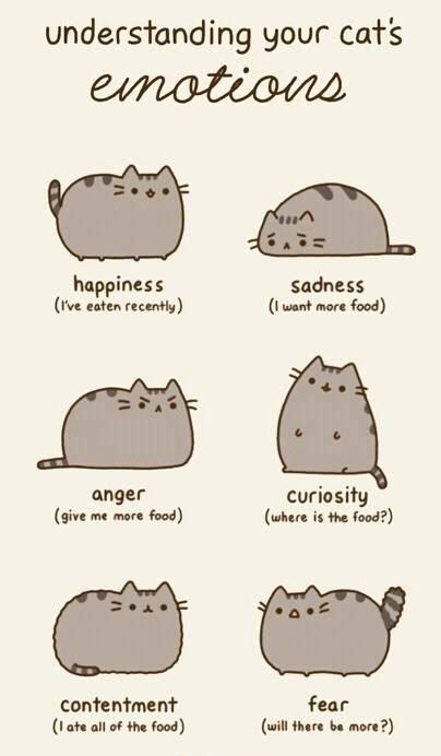 Tehe, sounds more like people than cats....