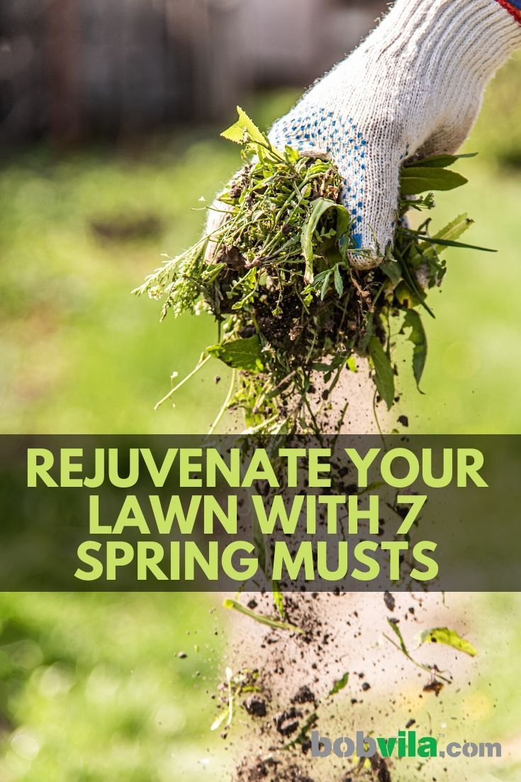 Rejuvenate Your Lawn with 7 Spring Musts Lawn care