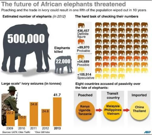 An estimated 60 elephants are slain each day in Africa, where the total numbers of the animals has plummeted by half since 1980