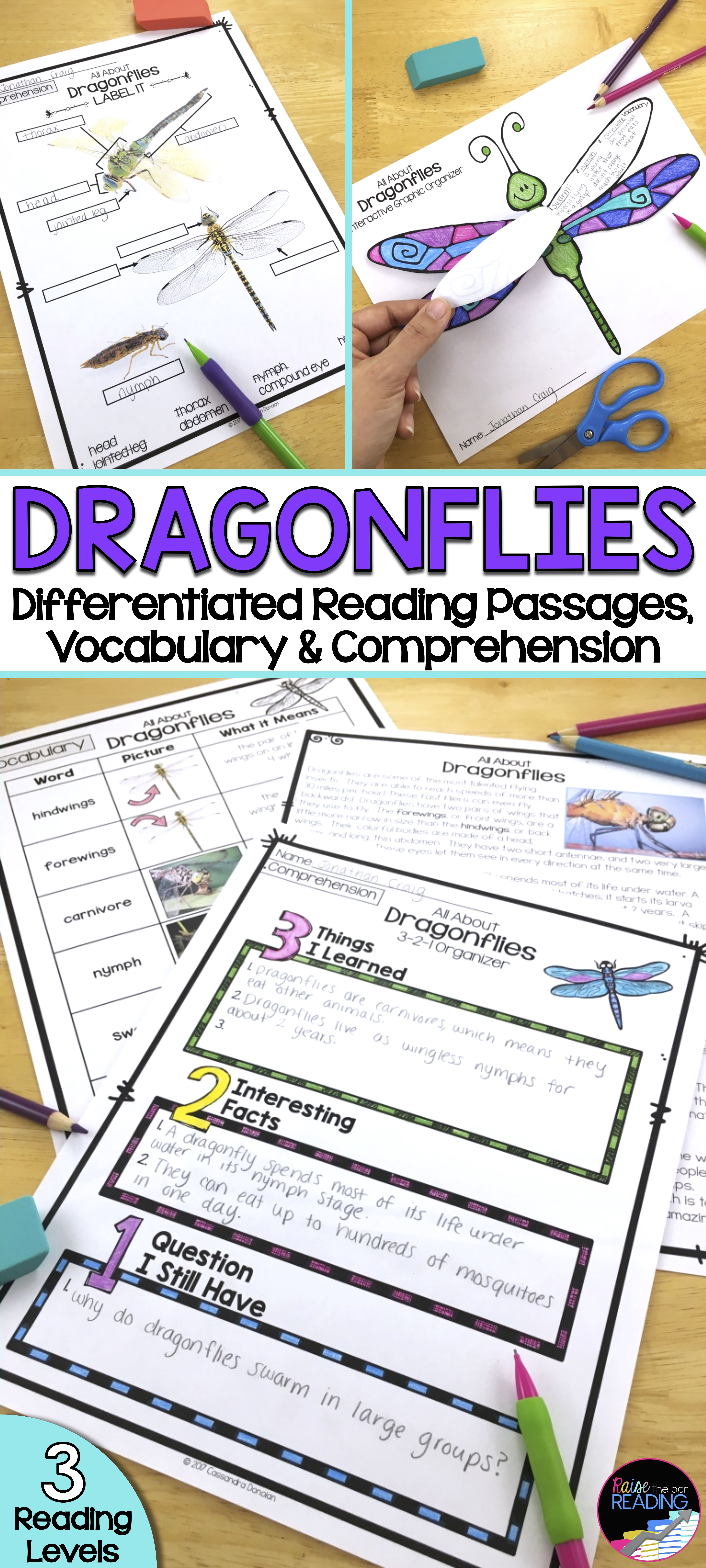 Insects Activity Dragonflies Reading Passages Vocabulary Comprehension Reading Passages Differentiated Reading Passages Teaching Third Grade Reading [ 10000 x 4500 Pixel ]