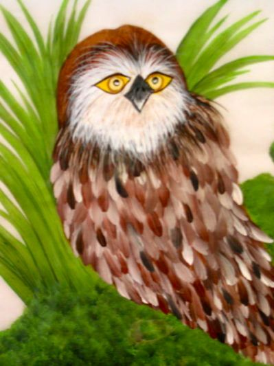 Owl. One Stroke Painting by Susan Earl.