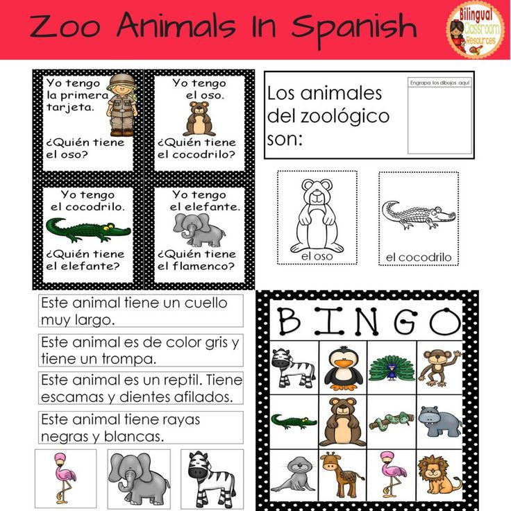 Zoo Animals In Spanish Spanish Learning Zoo Animals Learning Spanish Pictures Of Zoo Animals