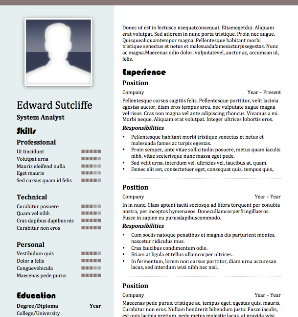 Free Resume Download Marquee  Microsoft Word Format  Resumes