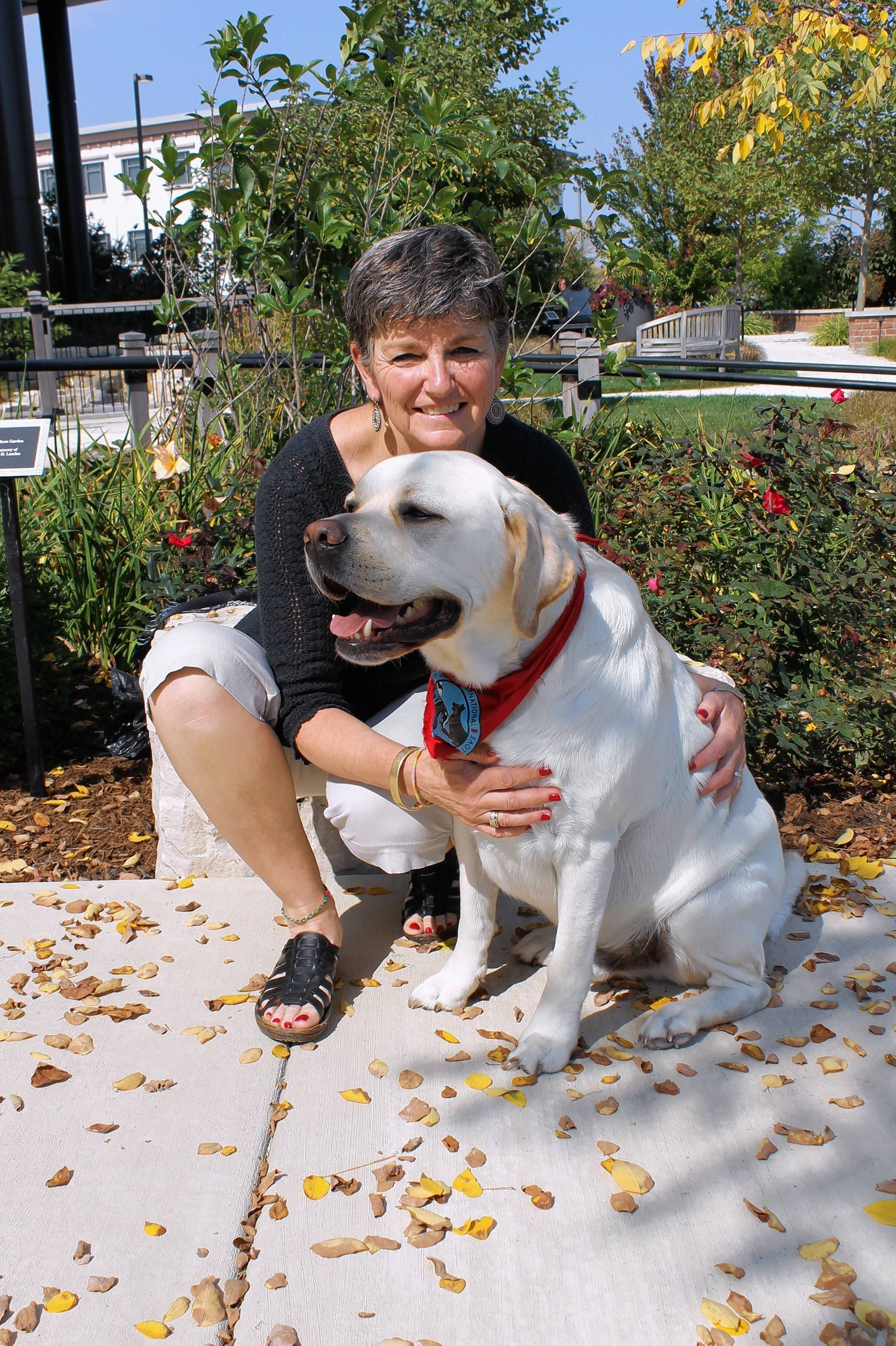 Therapy dog makes womans last days memorable therapy dogs cathe keres of lake bluff visits hospice patients with her certified pet therapy dog clancy 1betcityfo Image collections