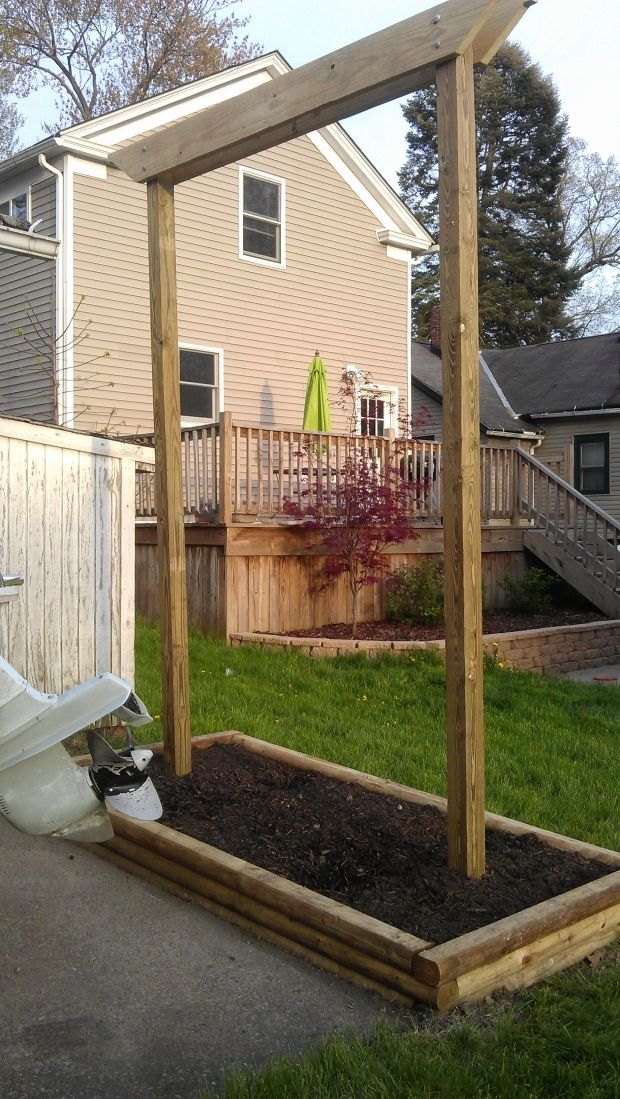 Hops Trellis So Steve Can Attempt His Own Beer And It 640 x 480