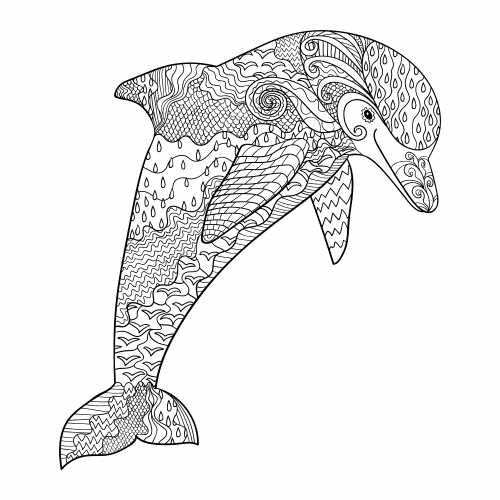 Dolphin coloring page, adult coloring sheet, nautical coloring ...