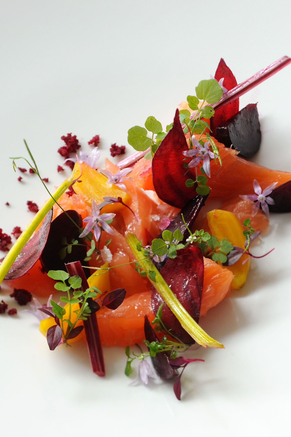 salmon mi cuit with beetroots | recipe | pinterest | fish dishes