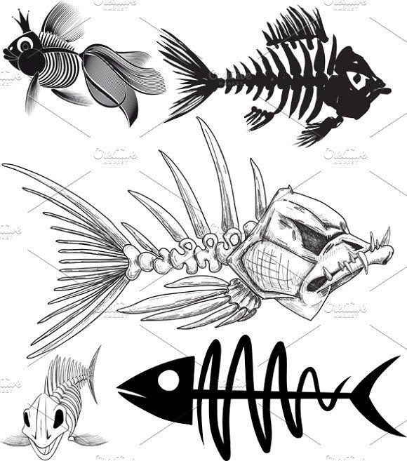 skeleton of five different fish by Sharpner on @creativemarket ...