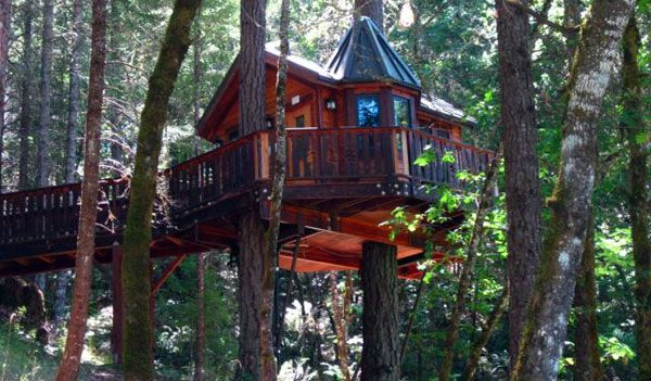 Treehouse Paradise Located In Cave Junction Southern Oregon Along The With Great Redwood Close By