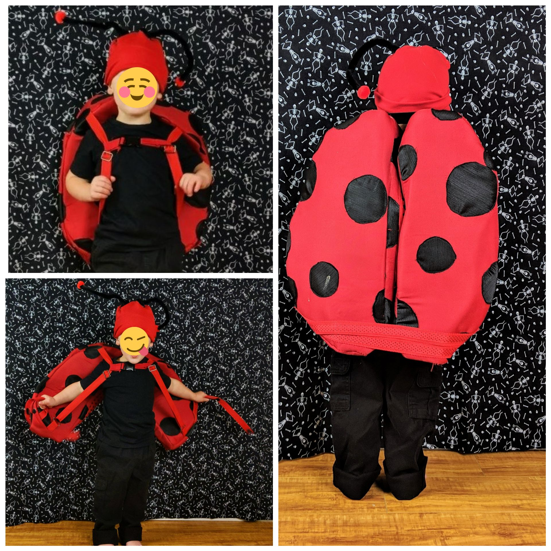 My son wanted to be a Ladybug for Halloween so I made him ...