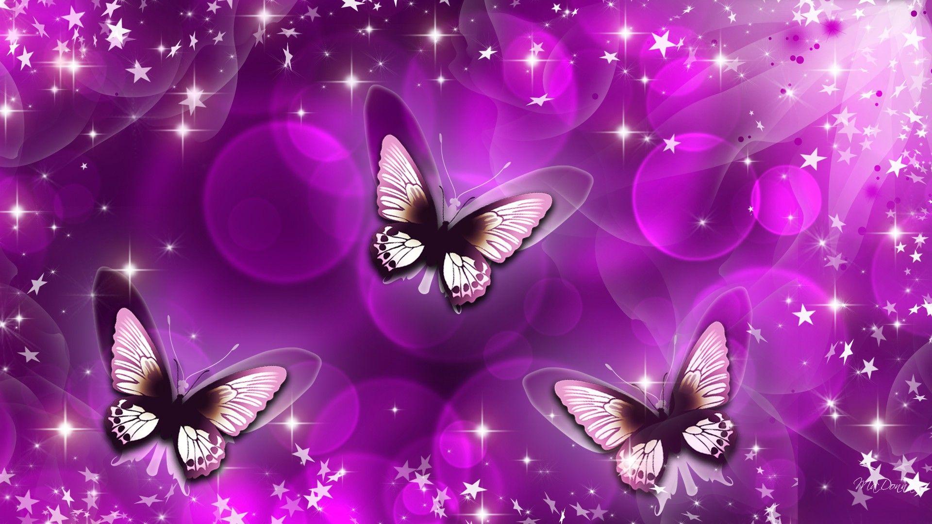 Purple Flower Wallpaper For Bedroom Butterfly Picture Wallpapers 8928 Wallpaper Risewall