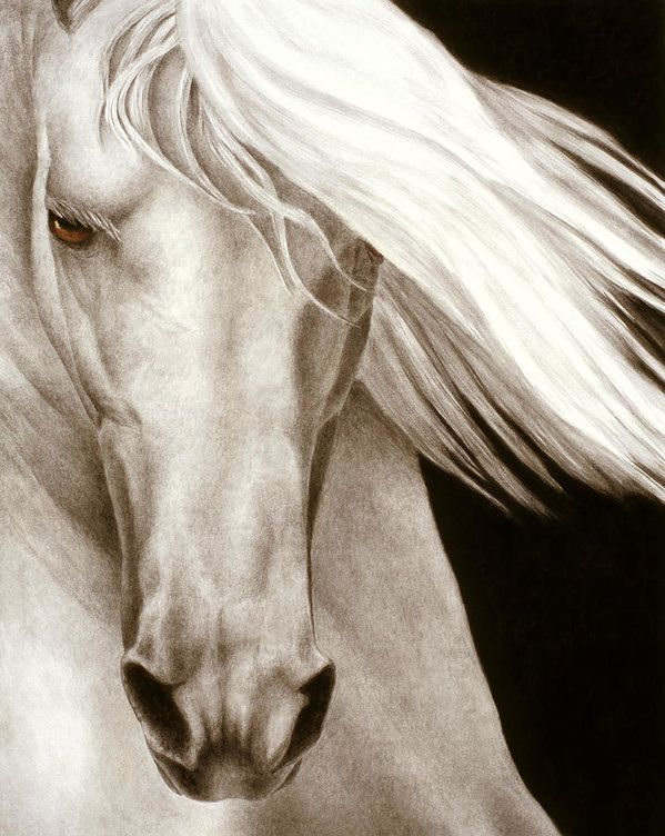 Horse Print featuring the painting Moonrise by Pat Erickson