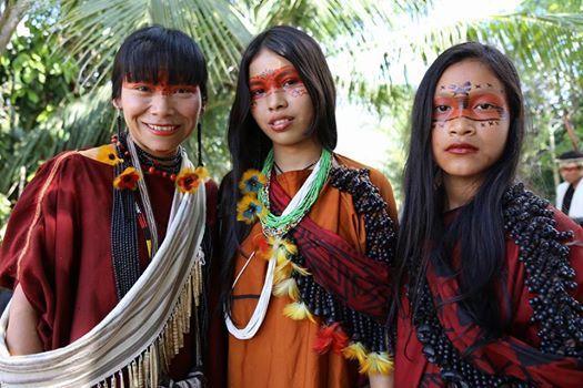 Mulher Indígena: Diversos olhares, muitos papéis - Xapuri | Mulheres  indigenas, Povos indígenas brasileiros, Indios brasileiros