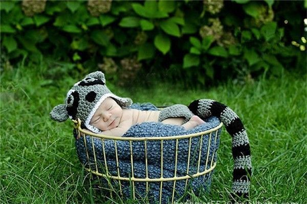 Baby Boy Girl Cat Raccoon Crochet Knit Hat Tail Shorts Fit  Photography Prop Cap #Unbranded #Everyday