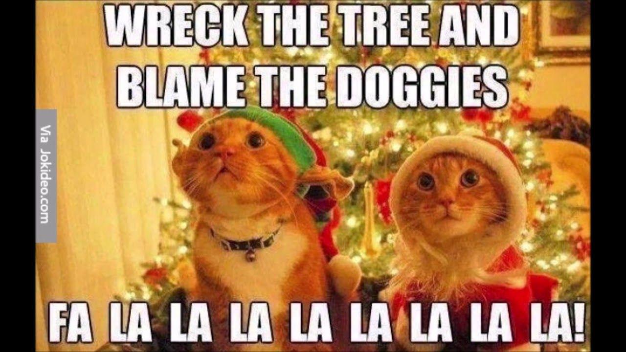 Barnyard Hilarious Holidays Funniest Animal Memes Barnyard Compilation Youtube Funny Cat Memes Christmas Memes Funny Funny Animal Memes