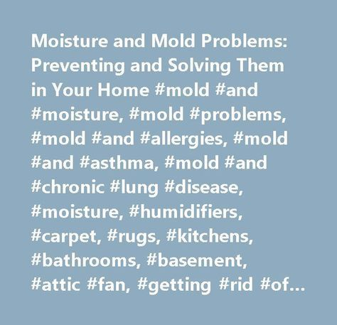 Moisture And Mold Problems Preventing Solving Them Your Home