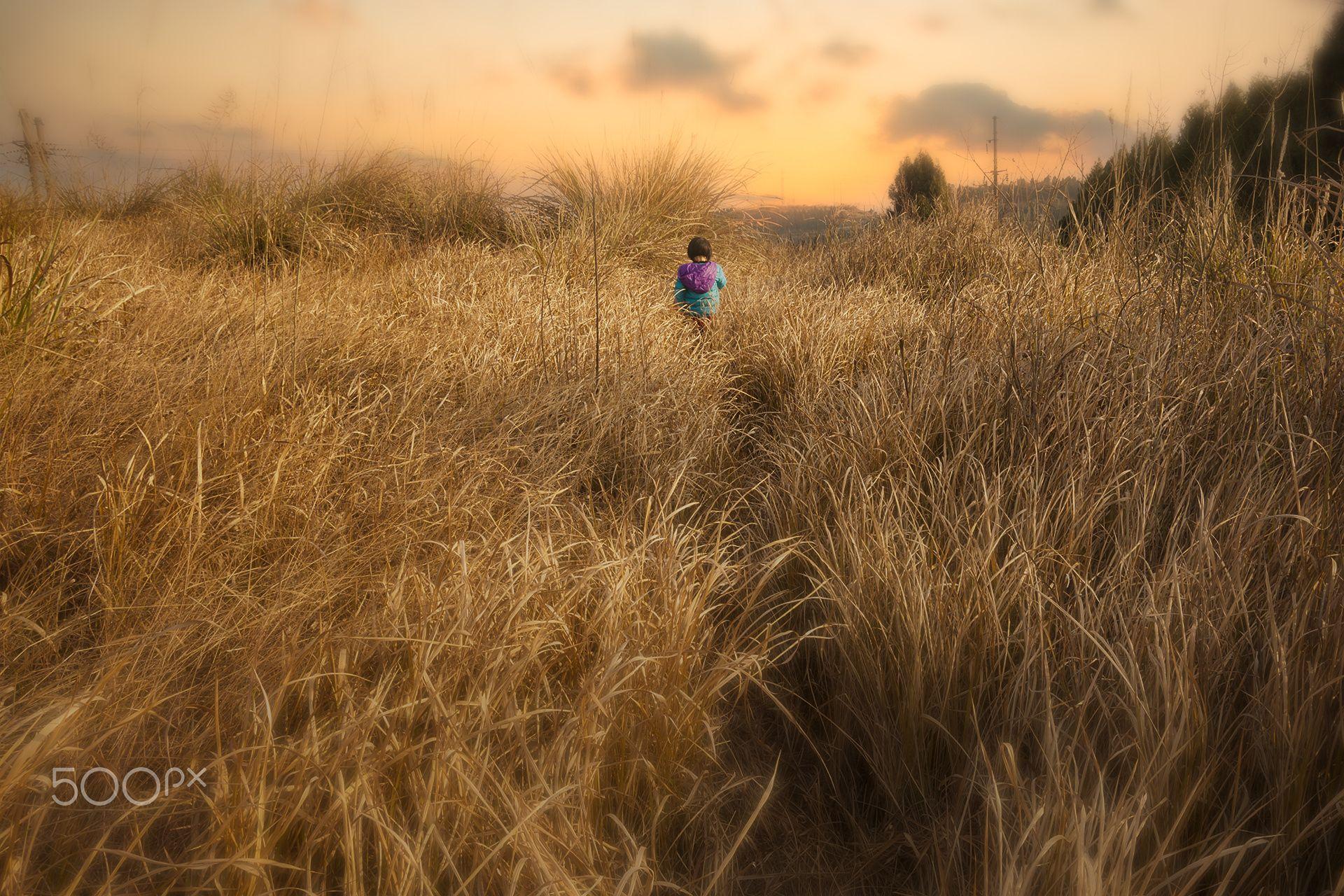 迷路的小孩 - 迷路的小孩