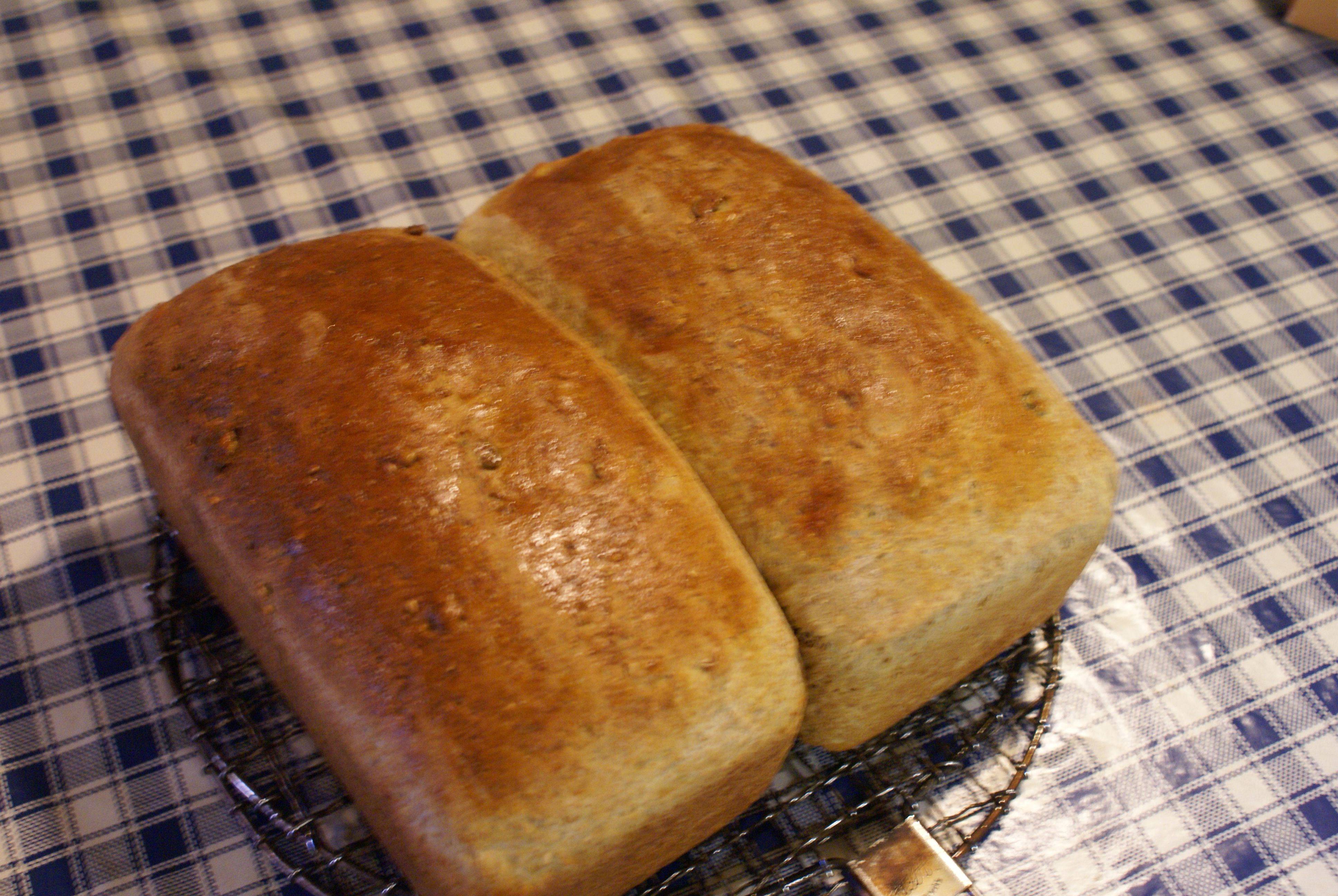 Bread made in the Aga - enjoy it for yourself at Handley Farm