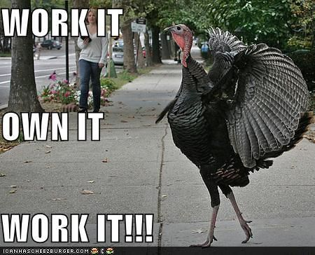 Untitled | Funny turkey pictures, Funny thanksgiving memes ...