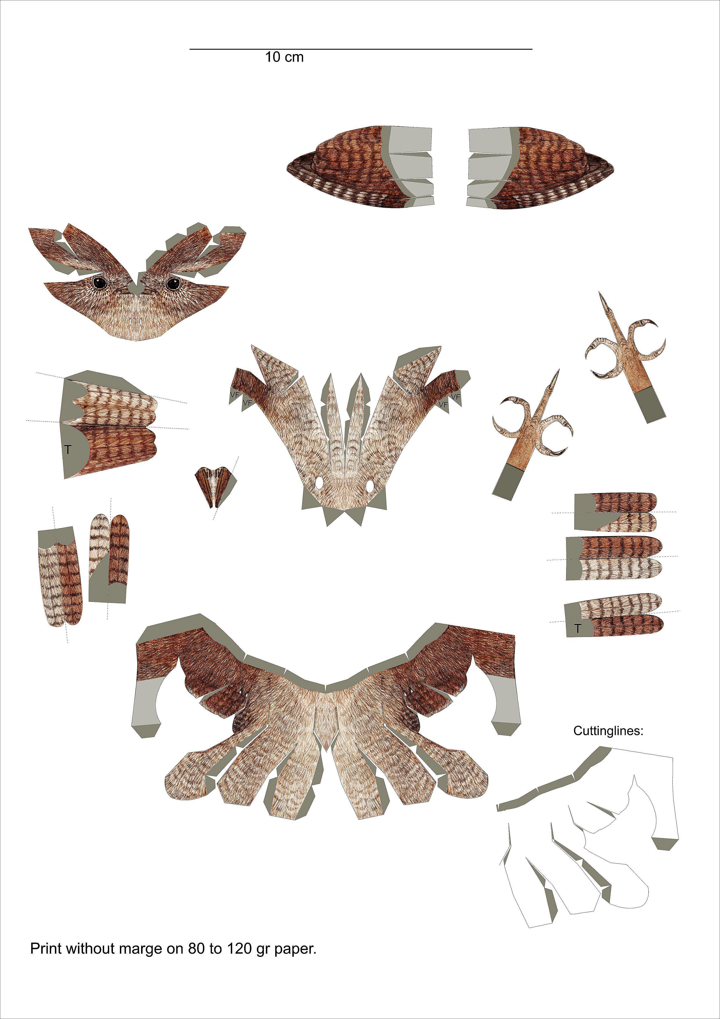 papercraft template wren - http://www.johanscherft.com/papercraft.html