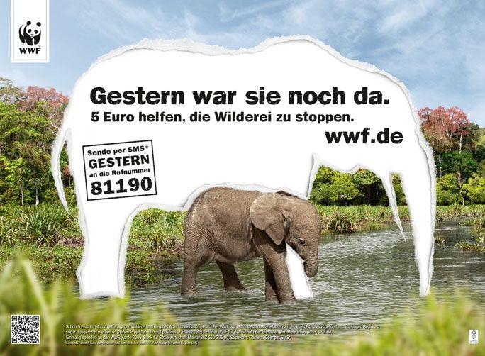 Spendenkampagne gegen Wilderei