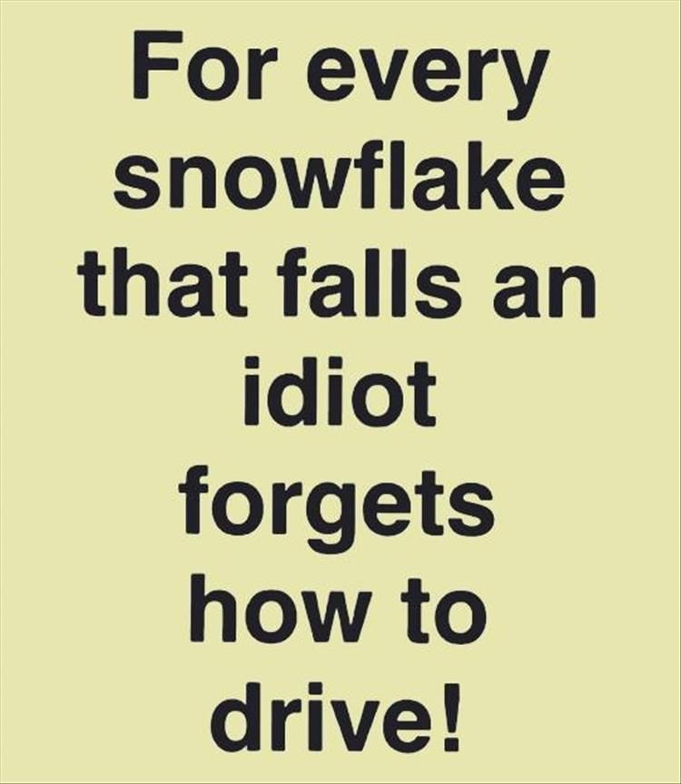 Hilarious! Iu0027m Dedicating This To My Hubby Who Hates Driving In Melbourne  |. Funny ThoughtsFunny QuotesFunny Winter ...