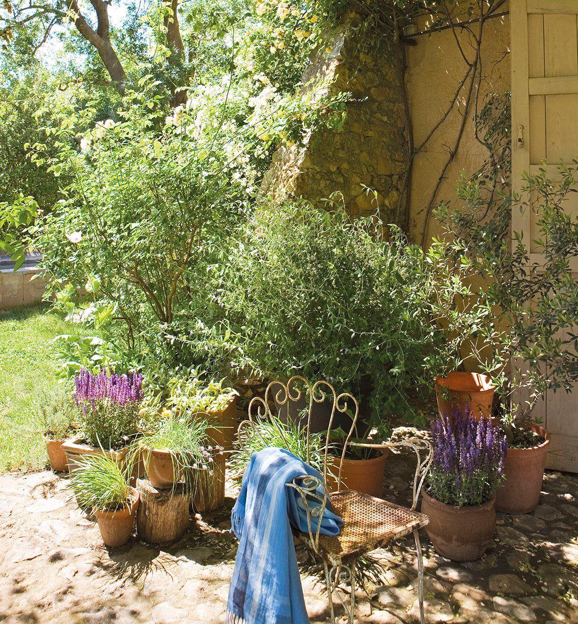 Entre Vino Y Rosas El Jardín De La Alegría Exteriorismo