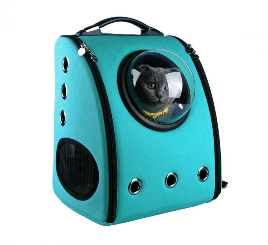 These Unique Bubble Window Pet Bags Let You Travel With Your Cat or Dog 32f3e9258a