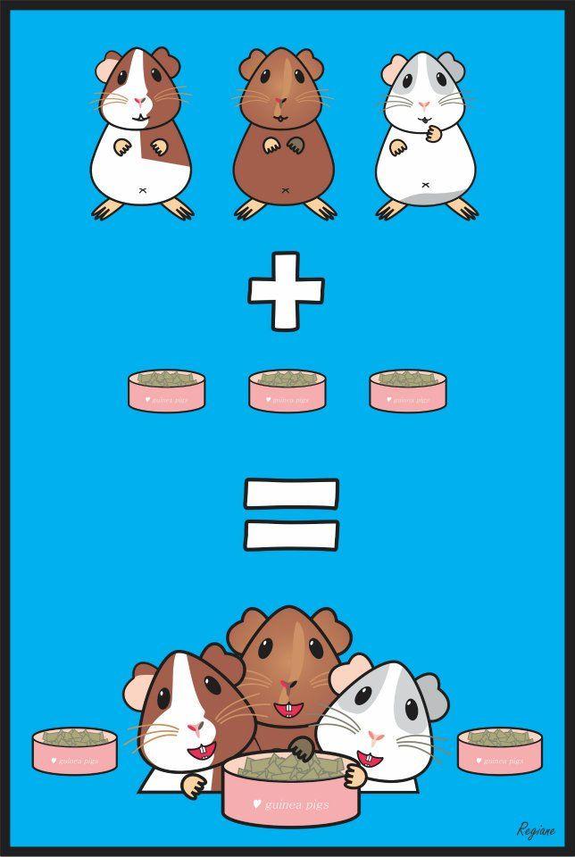 how to keep a guinea pig happy