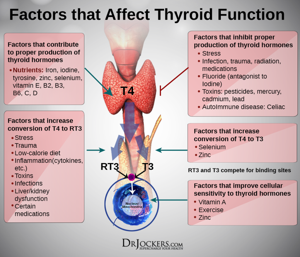 How To Increase Thyroid Hormone Naturally
