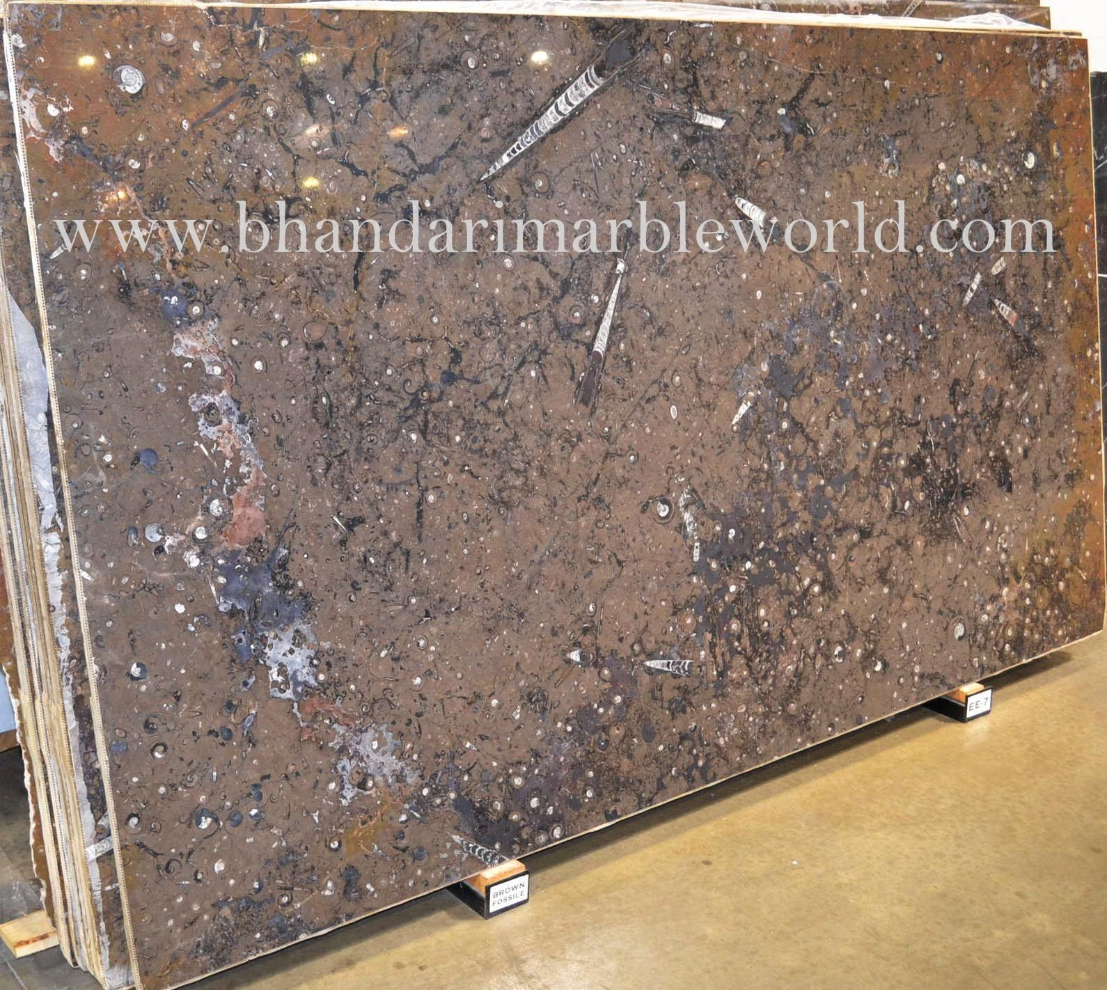 Bhandari marble group fossile brown marble is the finest and bhandari marble group fossile brown marble is the finest and superior quality of imported marble dailygadgetfo Gallery