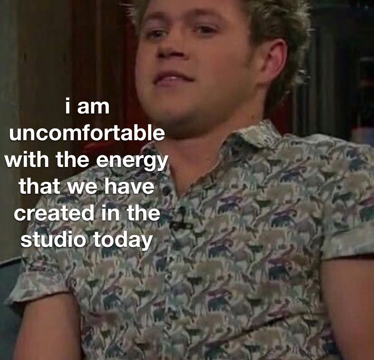 R A D D E S T E L L I E In 2020 One Direction Humor One Direction Videos One Direction Memes