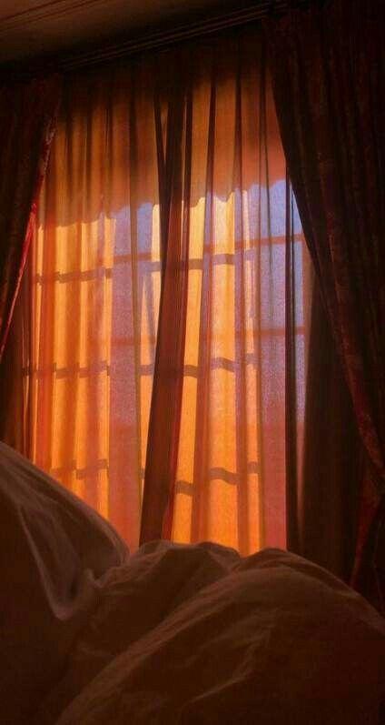 Tumblr picture - orange