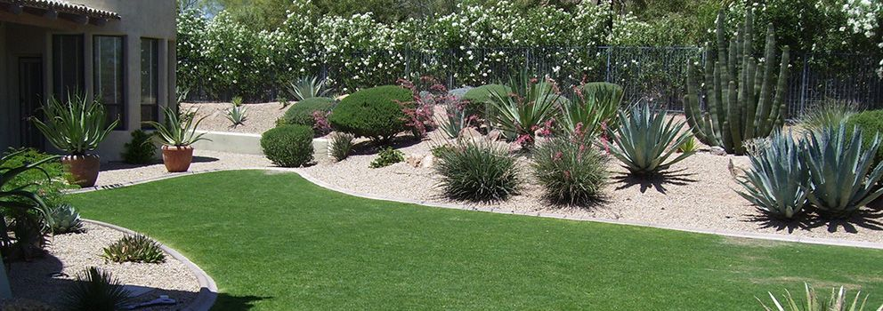 Garden Ideas Arizona back yard landscaping in arizona | landscape maintenance and yard