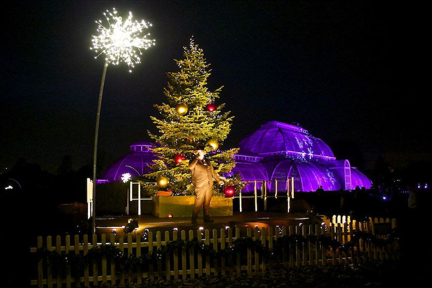 Kew Gardens lit up for Christmas 2015